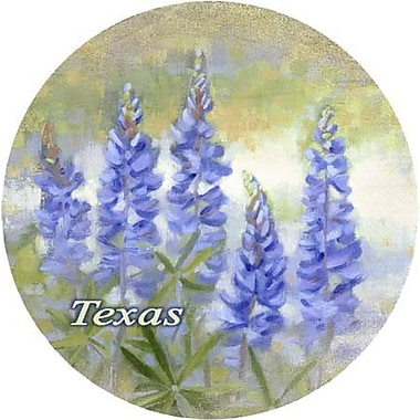 Thirstystone Bluebonnet Texas Coaster (Set of 4)
