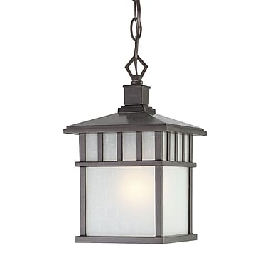Dolan Designs Barton 1 Light Hanging Pendant; Olde World Iron
