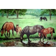 Custom Printed Rugs Horse Pond Doormat
