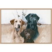 Custom Printed Rugs Great Hunting Dogs Doormat