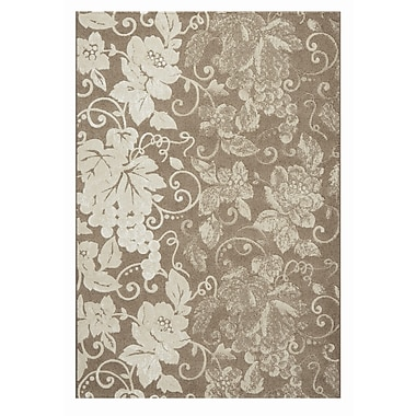 Dynamic Rugs Mysterio Brown Area Rug; 5'3'' x 7'7''
