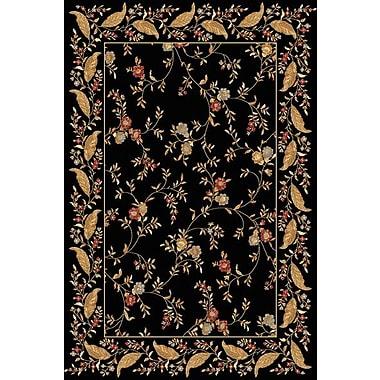 Dynamic Rugs Yazd Floral Black Area Rug; Runner 2' x 7'7''