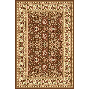 Dynamic Rugs Yazd Brown/Cream Area Rug; 2' x 3'6''
