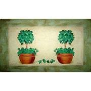 Custom Printed Rugs Topiary Pot Doormat