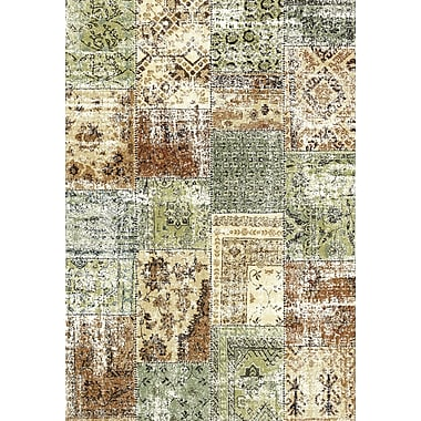 Dynamic Rugs Infinity Green/Brown Area Rug; 3'11'' x 5'7''