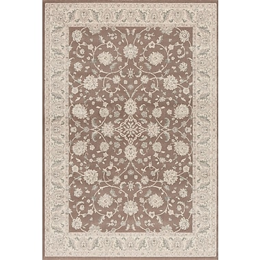 Dynamic Rugs Imperial Brick Brown Area Rug; 3'10'' x 5'7''