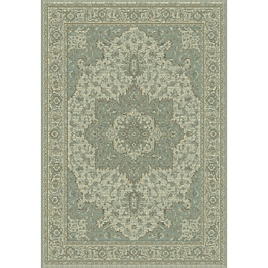 Dynamic Rugs Imperial Sage Area Rug; 6'7'' x 9'6''