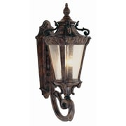 TransGlobe Lighting Outdoor 4 Light Wall Lantern