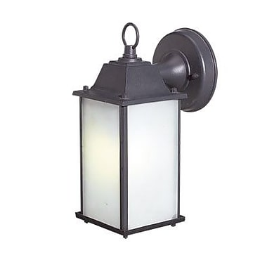 Woodbridge Energy Saving 1-Light Outdoor Wall Lantern; Powder Coat Rust