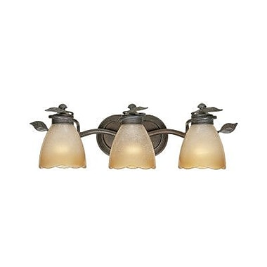 Designers Fountain Timberline 3 Light Vanity Light