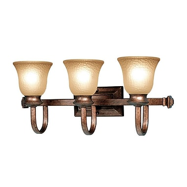 Woodbridge Dresden 3 Light Vanity Light; Marbled Bronze