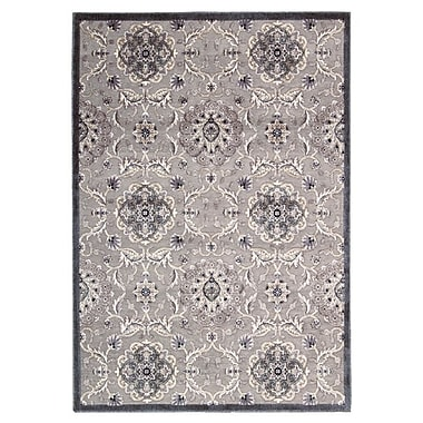Nourison Graphic Illusions Ivory Floral Area Rug; 7'9'' x 10'10''