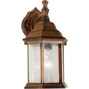 Forte Lighting 1-Light Outdoor Wall Lantern; Antique Bronze