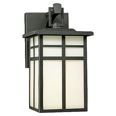 Thomas Lighting Mission 1-Light Outdoor Wall Lantern; No