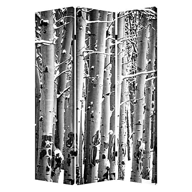 Screen Gems 72'' x 48'' Birch 3 Panel Room Divider