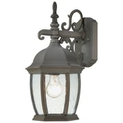 Thomas Lighting Covington 1 Light Outdoor Wall Lantern; Painted Bronze