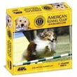 GDC-GameDevCo.Ltd American Kennel Club DVD Board Game