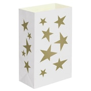 Luminarias Indoor/Outdoor Light Bag (Set of 12)