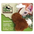 Play-N-Squeak Play-N-Squeak Backyard Bunny Cat Toy