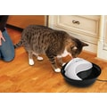 Pioneer Pet Plastic Drinking Fountain