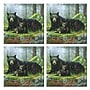McGowan Tuftop Black Bears Coasters (Set of 4)