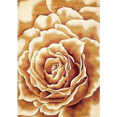 KAS Rugs Corinthian Floral Splendor Area Rug; Round 7'7''