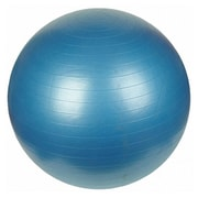 Sunny Health & Fitness 29.53'' Anti-Burst Gym Ball