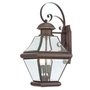 Quoizel Rutledge Outdoor Wall Lantern; Medium