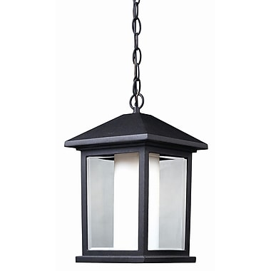 Z-Lite Mesa 1-Light Outdoor Hanging Lantern; Black