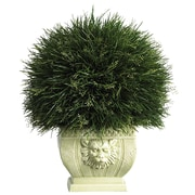 Nearly Natural Potted Desk Top Plant in Decorative Vase