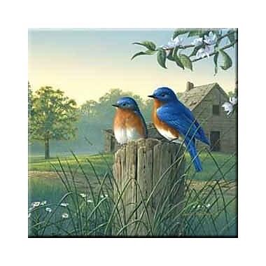 McGowan Tuftop Country Morning Bluebirds Trivet