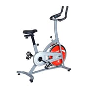 Sunny SF-B1203 Indoor Cycling Bike