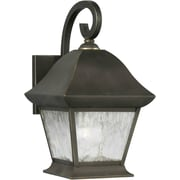 Forte Lighting 1 Light Outdoor Wall Lantern with Clear Shade