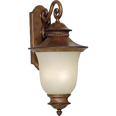 Forte Lighting 3 Light Outdoor Wall Lantern; Rustic Sienna