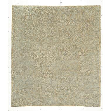 Artisan Carpets Designers' Reserve Beige Area Rug; 3' x 5'