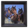 Thirstystone Horse Talk Ambiance Coaster Set (Set of 4)