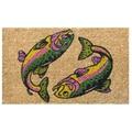 Imports Decor Two Fish Doormat; 18'' x 30''