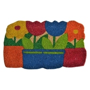 Imports Decor Flowers Pots Doormat; 30'' x 18''