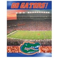 R&R Imports NCAA 550 Piece Jigsaw Puzzle; Florida Gators