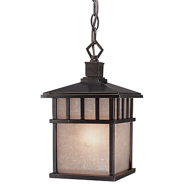 Dolan Designs Barton 1 Light Hanging Pendant; Winchester