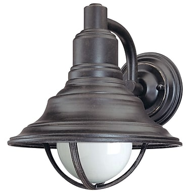 Dolan Designs Bayside 1-Light Outdoor Barn Light; 10.25'' x 9.25''