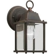 Forte Lighting 1 Light Outdoor Lantern; Painted Rust