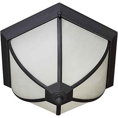 Forte Lighting 2-Light Flush Mount; Black