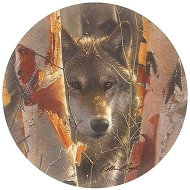 Thirstystone Birch Wolf Coaster (Set of 4)