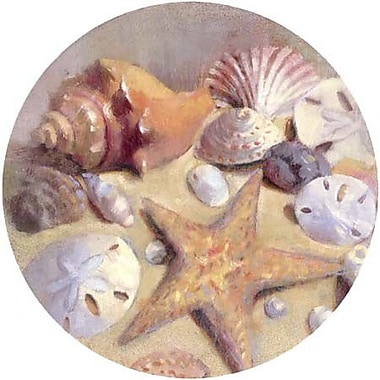 Thirstystone Sea Shells Coaster (Set of 4)