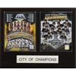 C & I Collectibles Pittsburgh 2009 City of Champions Plaque