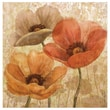 Thirstystone Poppy Allure II Occasions Coasters Set (Set of 4)