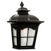 TransGlobe Lighting 1 Light Outdoor Pocket Lantern