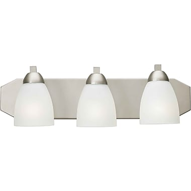 Forte Lighting 3-Light Vanity Light