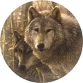 Thirstystone Woodland Companions Coaster (Set of 4)